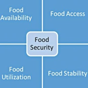 food_security1