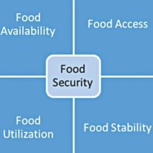 food_security1